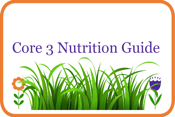 core 3 nutrition guide