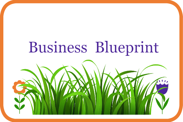 Business blueprint