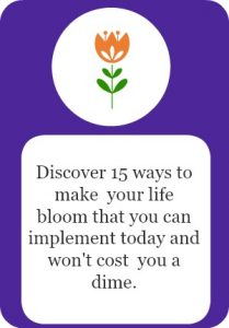 15 Ways to make your life bloom that won't cost you a dime