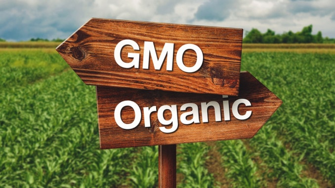 GMO Free Food – Get Your Copy Of This Powerful Book