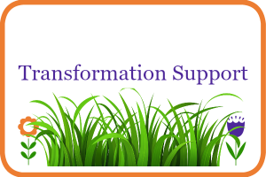 transformation support